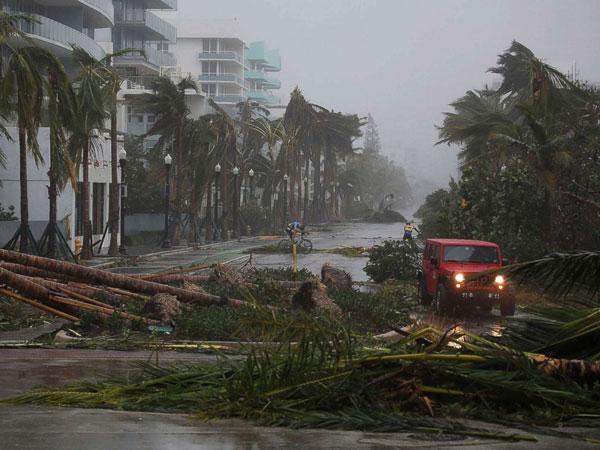 Miami-Killed555