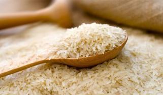 رواں سال کینیا کو3 لاکھ میٹرک ٹن سے زائدچاول برآمدہوا،عبدالرحیم جانو