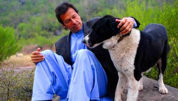 کتے کو گھر سے نہیں نکالا، عمران خان