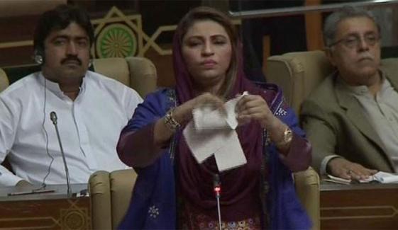 سندھ اسمبلی، نصرت سحر کا ڈپٹی اسپیکر کو جوتا دکھانے پر ایوان میں ہنگامہ، شورشرابا، شہلا رضانے فنکشنل لیگ کی خاتون کو ایوان سے نکال دیا