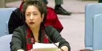 کشمیر اور فلسطین پر اقوام متحدہ کی قراردادوں پر عمل کیا جائے، پاکستان