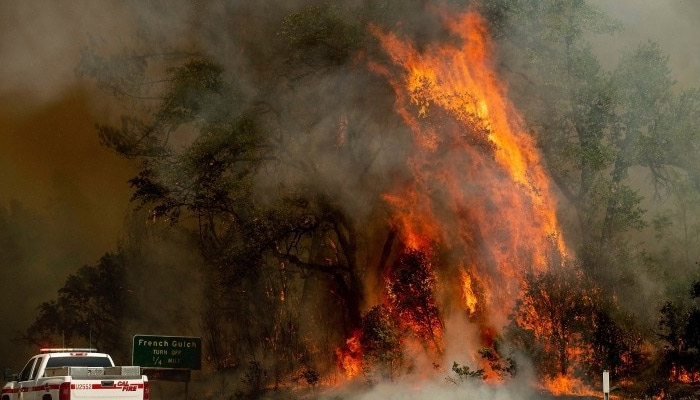 یونان کے جنگلات میںلگی آگ بے قابو ، ہلاکتیں 100ہو گئیں