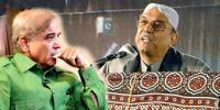 Asif Zardari Corruption Case Ppp Former President Pmln Nawaz Sharif