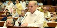 Shehbaz Should Give Suggestion On Budget