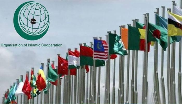 مقبوضہ کشمیرمیں ڈومیسائل کامتنازع قانون عالمی قوانین کی خلاف ورزی، او آئی سی