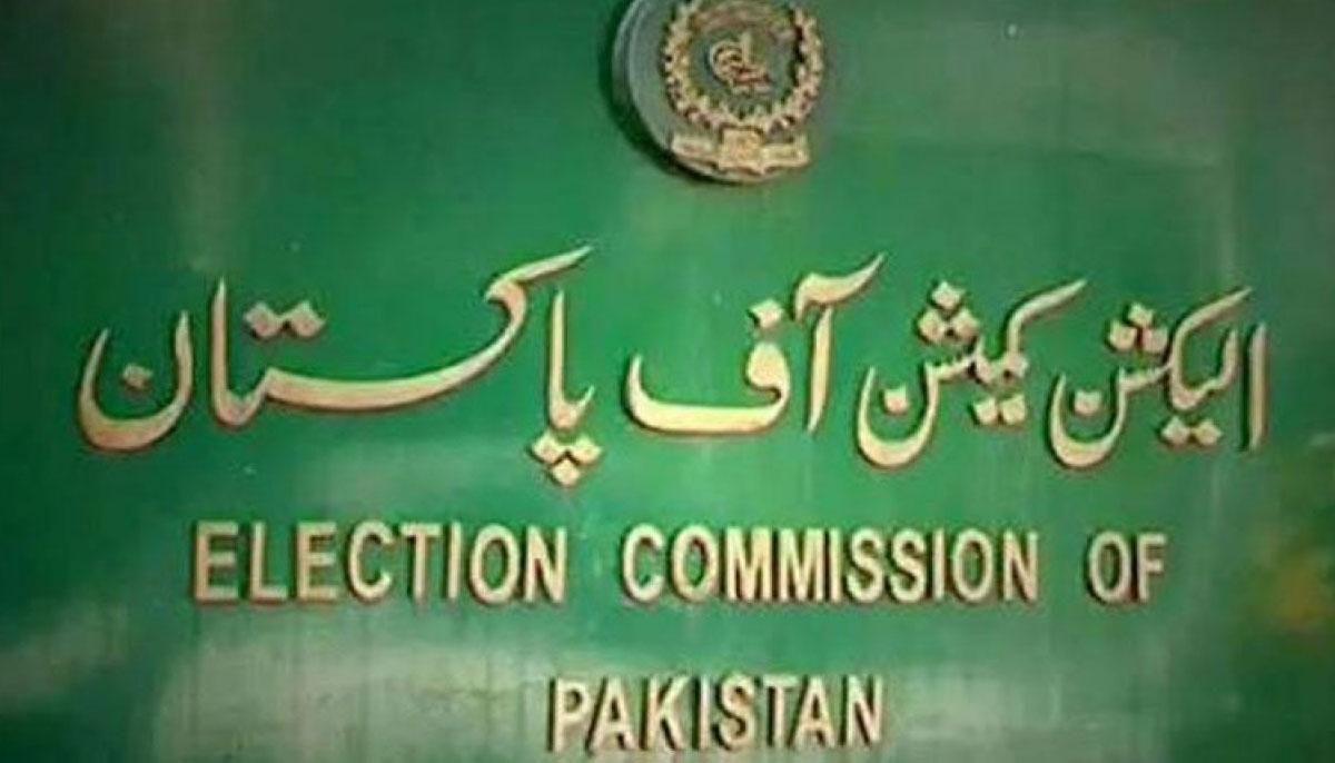 فیصل واوڈا اور راجہ بشارت نااہلی کیس الیکشن کمیشن میں مقرر