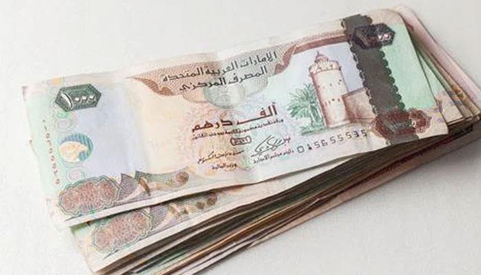 ابوظبی ، نوجوان کی سرعام تذلیل پر خاتون کو 15 ہزاردرہم جرمانہ