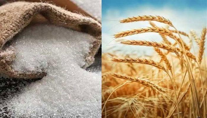 چینی، گندم کی طرح خوردنی تیل کی قیمت میں 50 روپے کلو اضافہ
