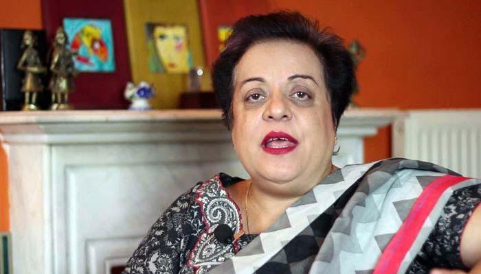 پاکستان دہشتگردی کے خاتمے پر توجہ مرکوز کرے،  بھارت شیریں مزاری کے بیان پر سیخ پا