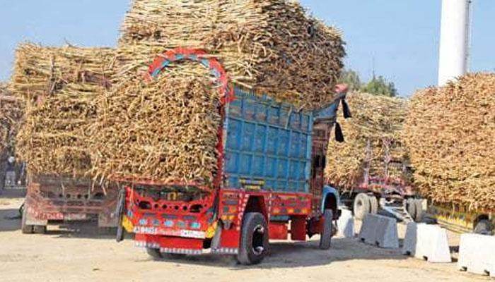 سندھ، پنجاب کین کرشنگ سیزن آئندہ اتوار تک ختم ہوگا