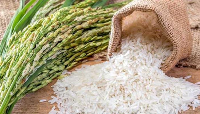 چاول کی کاشت  پر 60 روز کیلئے پابندی عائد، دفعہ 144نافذ