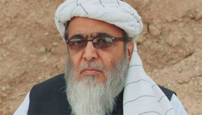 """باپ""کو پیپلزپارٹی کا ""باپ"" کہہ کر بڑی گالی دی گئی،حافظ حسین احمد"