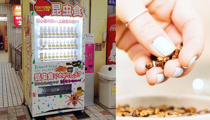 جاپان میں بھوک مٹانے کیلئے کیڑوں والی وینڈنگ مشین