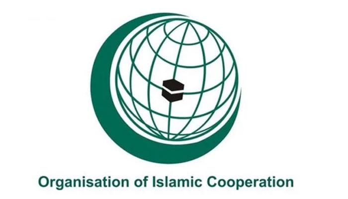 اسرائیلی جارحیت، او آئی سی کی ایگزیکٹو کمیٹی کا اجلاس آج طلب