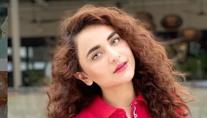 یمنیٰ زیدی کی اداکاری سے بھارتی سوشل میڈیا اسٹار متاثر