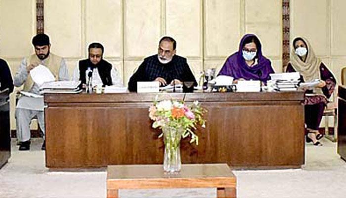 سینیٹ خزانہ کمیٹی کی تنخواہوں میں 20 فیصد اضافے کی سفارش