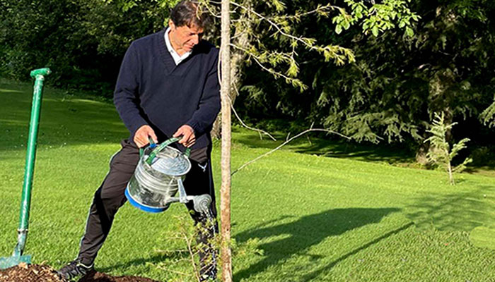 وزیراعظم نے نتھیا گلی میں پائن کا پودا لگایا