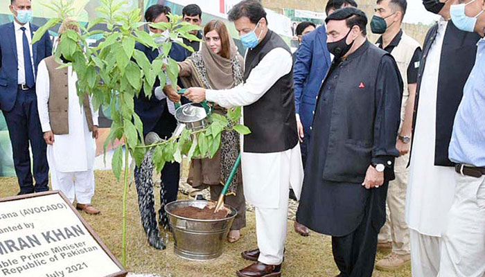 وزیراعظم نے اسلام آباد میںمون سون شجرکاری مہم کا آغازکردیا