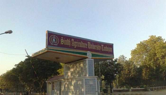 زرعی یونیورسٹی: رجسٹریشن کی تاریخ میں 20 ستمبر تک توسیع