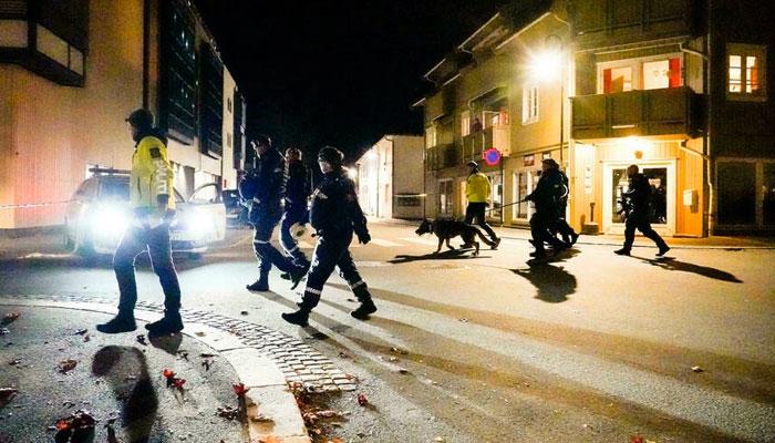 ناروے میں تیر کمان کے وار سے متعدد افراد ہلاک، ملزم گرفتار