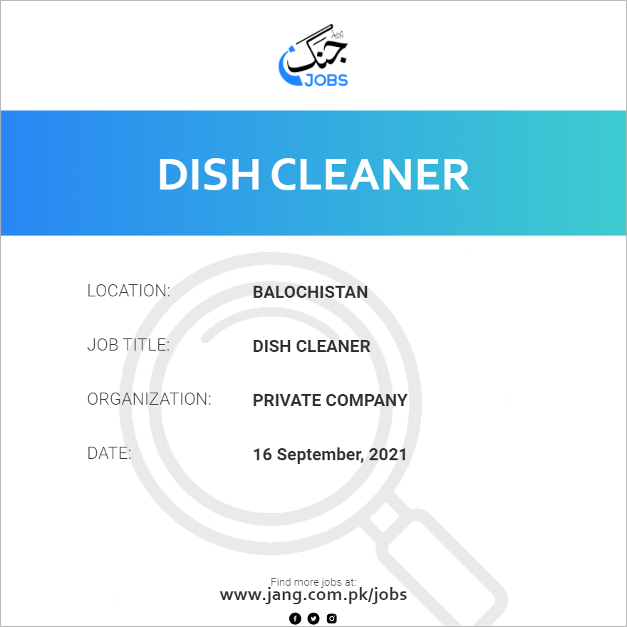 Dish Cleaner