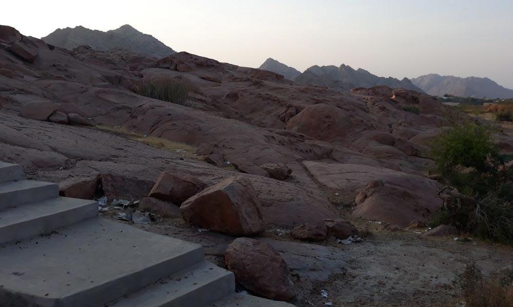 صحرائے تھر کی انگڑائی