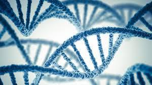 علمِ حیاتیات کی پھیلتی سرحدیں
