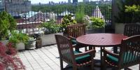 چھت پر باغبانی، سائبان اور بار بی کیو
