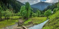 فلم پاکستان کی سیاحت کے لئے سفیر کا فریضہ انجام دے سکتی ہے