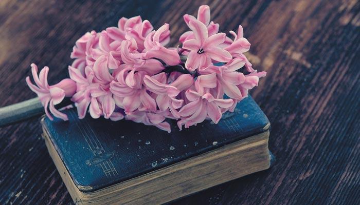 اکیسویں صدی میں ادب کے تقاضے اور ادیبوں کی ذمے داریاں