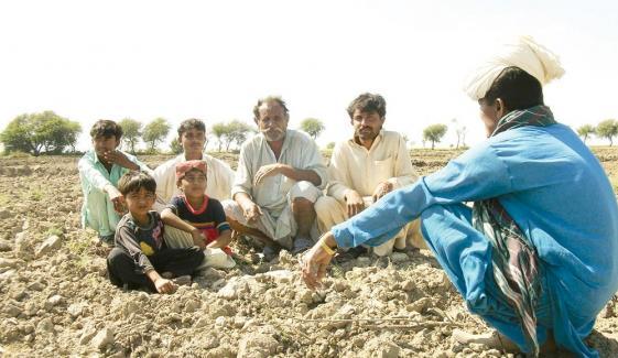سندھ میں صدیوں سے جاری ''سام'' کی رسم