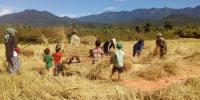 فصلوں کی کاشت سے پہلے زرعی ماہرین سے مشاورت ضروری