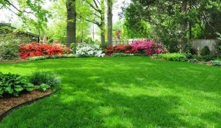 باغ کی سیر