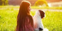 جانور پالیں بیماریاں دور بھگائیں