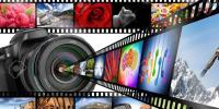 رواں برس ریلیز ہونے والی فلموں پر ایک نظر