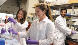 ''بائیو میڈیکل انجینئرنگ'' طب اور انجینئرنگ کے اصولوں کا مجموعہ