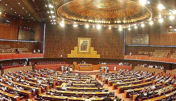 نئی پارلیمنٹ میں نوجوان قدم بڑھائیں