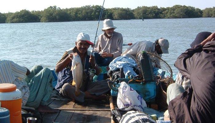 مچھلیاں ہم سے کیوں روٹھ گئیں، کہاں چلی گئیں ؟