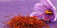 Medical Benefits Of Saffron
