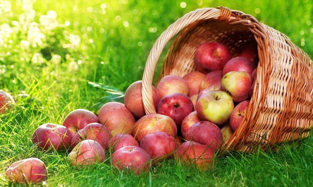 لال سیب کھائیے...خوبصورتی بڑھائیے