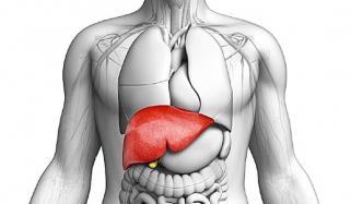 Blood Pressure Of Liver