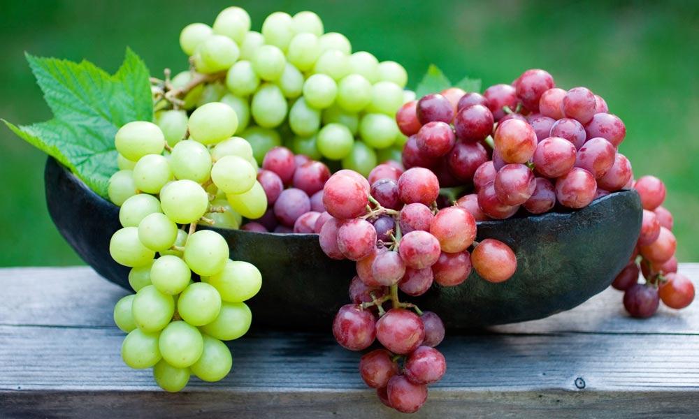 قرآن میں بیان کیے گئے جنتی پھلوں کی طبی افادیت