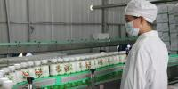 China Dairy Giants Look To South East Asia