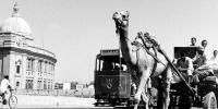 Tram In Karachi