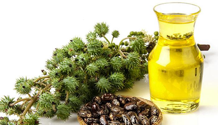 مختلف تیل کے طبی فوائد