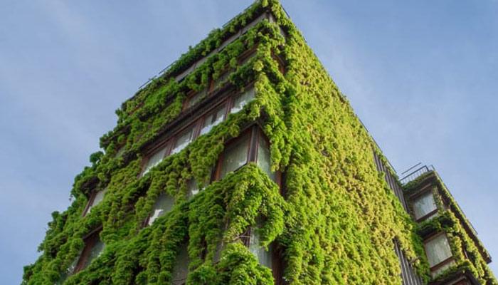 مستقبل 'گرین بلڈنگز' کا ہے