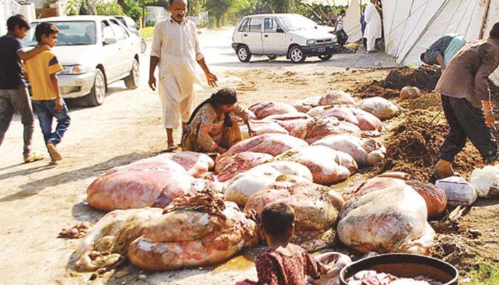 مضر صحت گوشت کی فروخت پولیس و انتظامیہ کی چشم پوشی