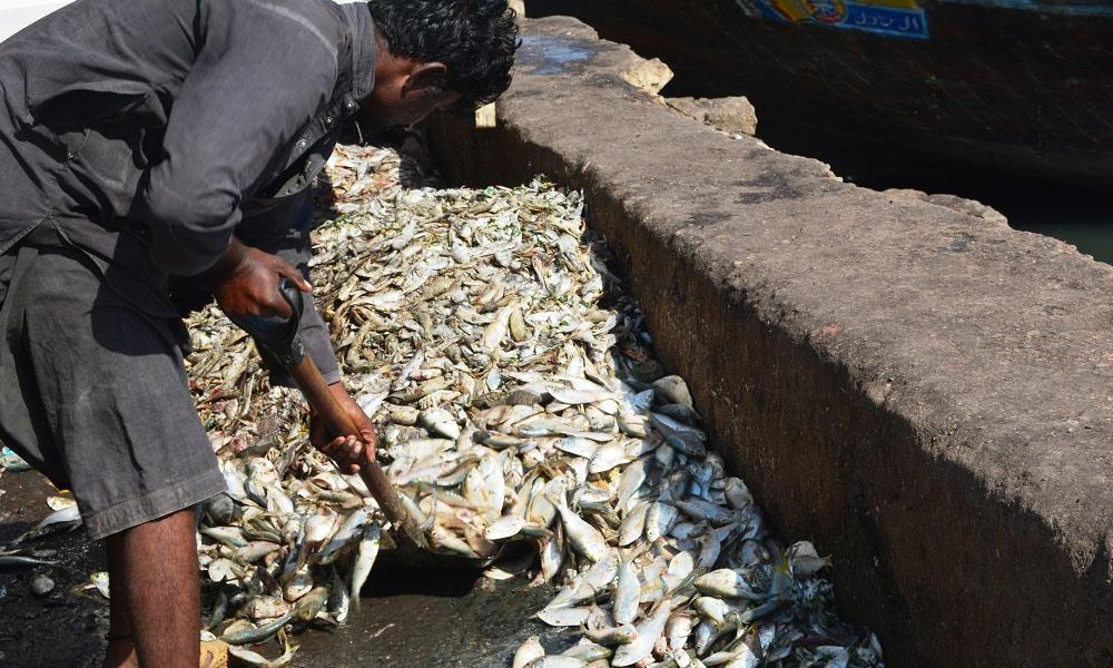 سمندر کی تباہ کن آلودگی