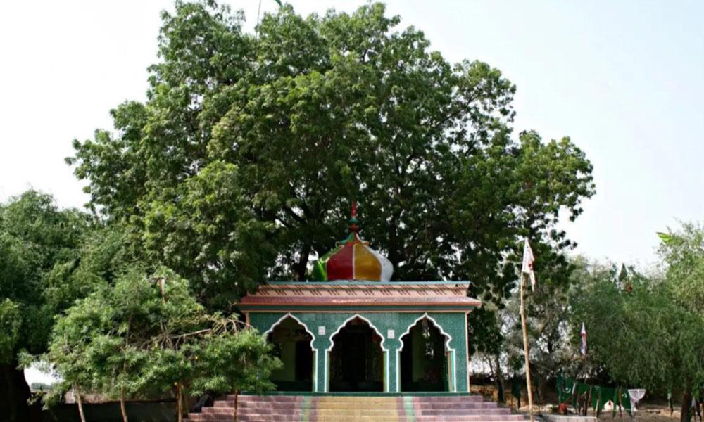 ''کاسبو'' تپتے ریگزار کا جنت نظیر قصبہ، مور وں کی وادی کہلاتا ہے