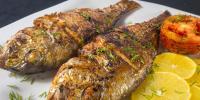 Benefits Of Fish